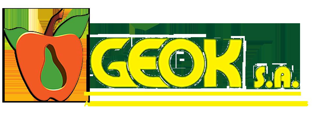 GEOK S.A. Logo