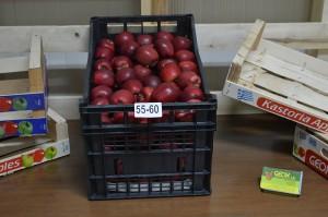 55-60 (80-100 gr per apple)